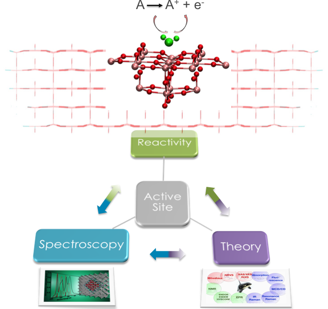 Theoretical spectroscopic protocols for catalysis